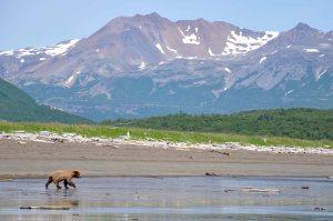 AlaskaB14