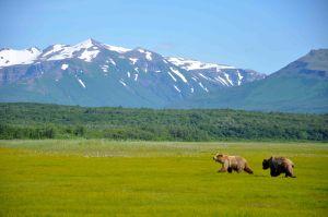 AlaskaB4