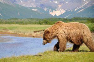 AlaskaB5