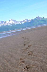 AlaskaB6
