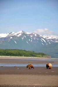 AlaskaB7