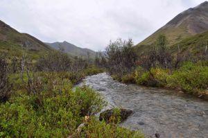 AlaskaLandscape13