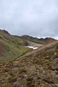 AlaskaLandscape15