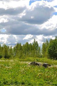 AlaskaLandscape29