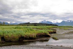 AlaskaLandscape3