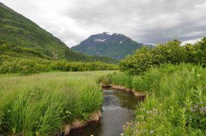 AlaskaLandscape4
