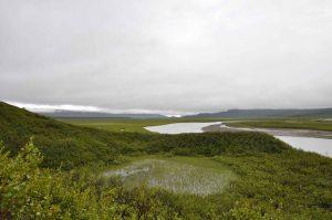 AlaskaLandscape9