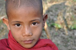 Burmese Child Monk
