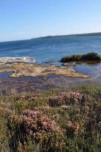 Botany Bay_4